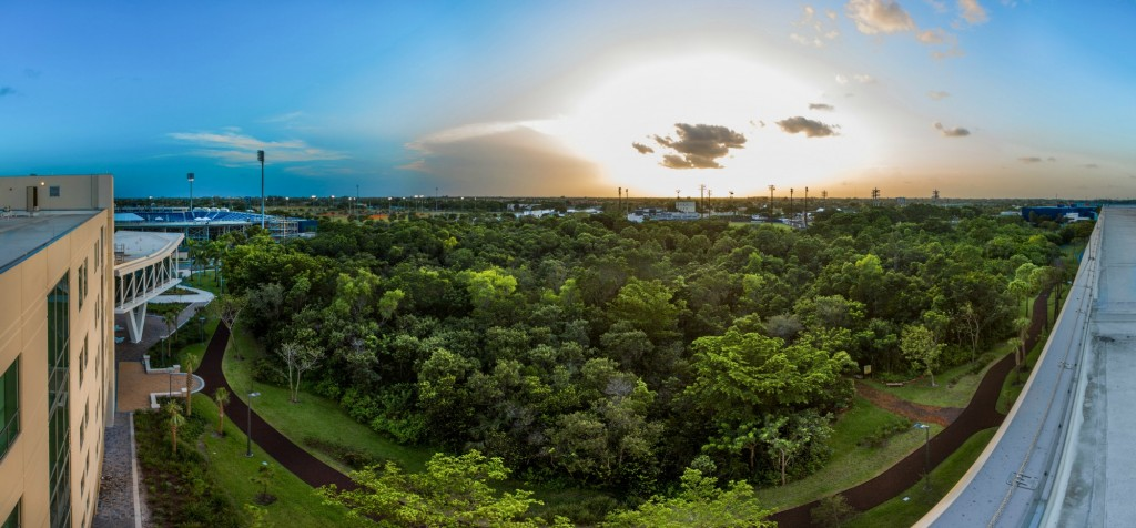 nature-preserve-pano-scaled down
