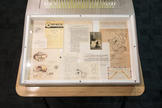 Documents from the archive of scientist J. Manson Valentine from the Frost Science collection were the inspiration for the Neural Networks exhibit.